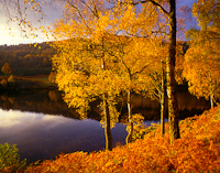 Strathtummel, Perth & Kinross, Scotland.