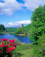 Loch Ard, The Trossachs, Stirling, Scotland.