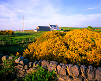 Islay Farmhouse, Nr. Bridgend, Argyll & Bute, Scotland.