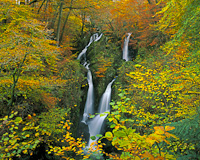 Stockghyll Force, Ambleside, Cumbria, England.