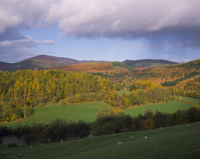 Dee Valley, Vale of Llangollen, Denbighshire, North Wales.