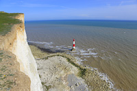 Beachy Head, Nr. Eastbourne, Sussex, England.