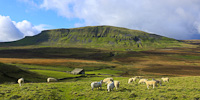 Pen-y-Ghent, Yorkshire Dales, England.