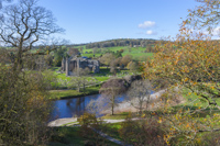 Bolton Abbey, Wharfedale, Yorkshire, England.