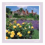 Get Well Soon Card - Roses and Lavender - left blank for your own image