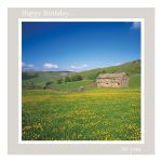 Birthday Card - Buttercups - message inside reads: best wishes on your birthday