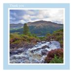 Thank You card - Babbling Brook - left blank for your own message
