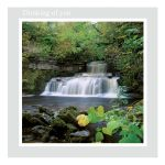 Thinking of You Card - 'Cascade' - left blank for your own message