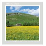 Thinking of You Card - Buttercups - left blank for your own message